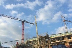 This is the second crane Mantis Cranes have placed on this project.
